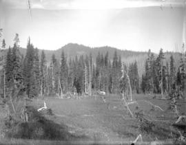 Camp at summit of Canyon Creek