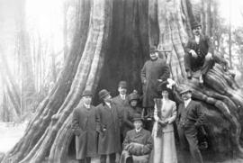 [An unidentified group in front of the Hollow Tree]