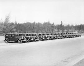 Fleet of Star Taxis - Plymouth cars
