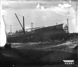 "[Dominion Government Ship ""Kestrel"" being constructed at Wallace Shipyards near the sou..."