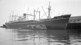 M.S. Taiyu Maru [at dock, with lumber-filled barges alongside]