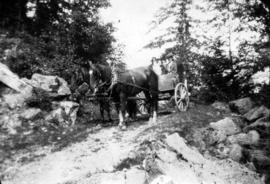 [Mrs Phillip Wadsworth in a wagon on Wadsworth Island in the Fraser River]
