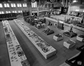 Produce and horticultural competitions and exhibits in the Forum