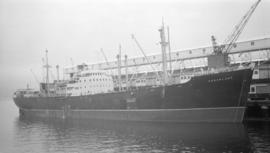 M.S. Fernplant [at dock]