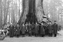 [His Excellency, The Duke of Devonshire and others in front of the Hollow Tree]