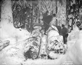 [Men attaching chains to logs in snow covered forest]