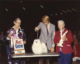 Best in Show award being presented at 1975 P.N.E. All-Breed Dog Show [Maltese]