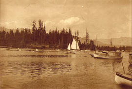 "Deadman's Island before the ""slaughter"", 1905, Vancouver, B.C."