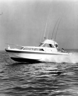 31 foot Uniflite cruiser