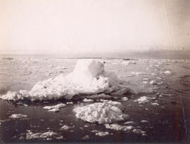 "[View of mountains and icebergs from the S.S. ""Queen""]"