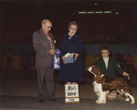 Best in Group [Sporting Group: Springer Spaniel] award being presented at 1976 P.N.E. All-Breed D...