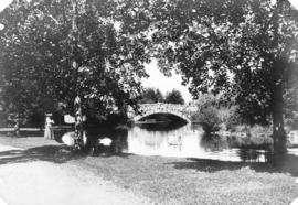 [View of the stone bridge in Beacon Hill Park]