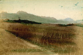 [View of large agricultural field with mountains in the background]