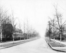 Burnaby Street (looking towards English Bay)