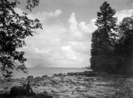"""The Tide's Out"", view of Brockton Point from Lumberman's Arch area, Stanley Park"