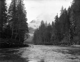 [View across the Cheakamus River towards the mountains]