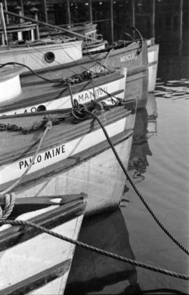 "[The bows of fishing boats ""Palomine"", ""Manitou"" and ""Mercury""]"