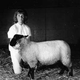 Child with sheep