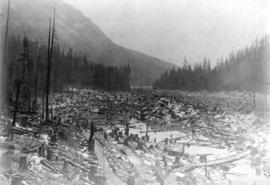 [View of clear-cut trees at Buntzen Lake Dam site]