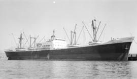 M.S. Ionian Seafarer [at dock]