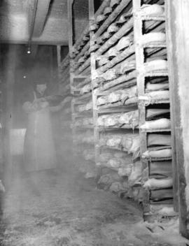Cold storage of fish in a Prince Rupert cannery