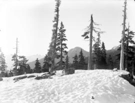 [Snowy slope on Grouse Mountain]