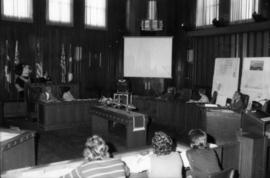 Tillicum meets City Council in council chambers