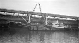 M.S. Silvia Onorata [at dock, with lumber-filled barges alongside]