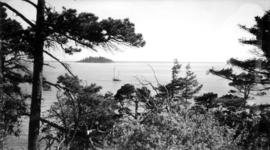 View of trees, sailboat and small island in the distance