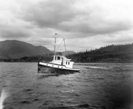 "[""Westminster Boy"" on Cowichan Lake]"