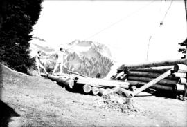 Hauling a new log into position for the wall of the main cabin [at] Garibaldi Hostel
