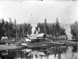 [Fraser Valley Sawmill, with shore area in foreground and forest in background]