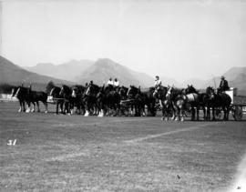 Four-horse teams with wagons
