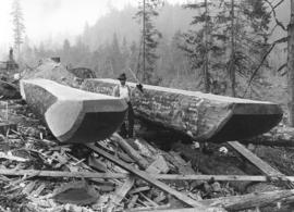 [Man building skid sleigh for Capilano Timber Company on future site of the British Properties]