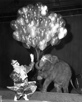 Baby Stella of Polack Elephants and Jim Douglass : [publicity photo of clown and baby elephant in...