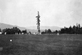 Cricketers [at Brockton Point]