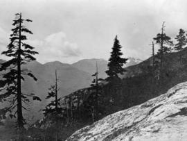 Capilano Valley and the Lions - from Grouse