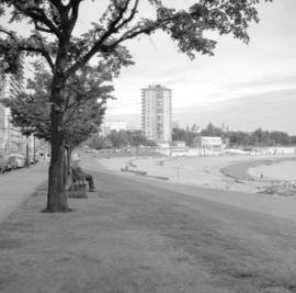 View of English Bay beach from Stanley Park