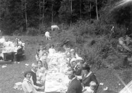 [Unidentified groups having a picnics]