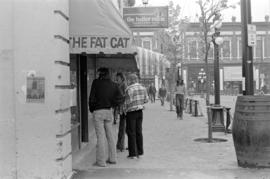 The Fat Cat and The Boiler Room