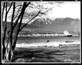 No wheat [view from Kitsilano Beach of freighter anchored in the harbour]