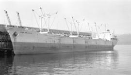 M.S. Ever Reliance [at dock]
