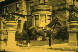 Girl on horse in front of Gabriola house at 1531 Davie Street