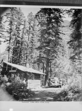 """Tamarack"" cabin Silver Creek Camp"