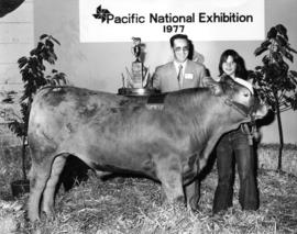 1977 P.N.E. 4-H Club competition winner and unidentified P.N.E. officer pose with livestock and p...