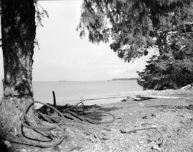 [View across the water from] Sandspit [on the] Queen Charlotte Islands