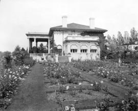 "[The rose garden at the A.D. McRae residence (""Hycroft"") - 1489 McRae Avenue]"