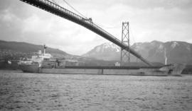M.S. Irish Star [passing under Lions Gate Bridge]
