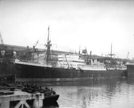 "S.S. ""Damsterdyk"", Holland-America Line [at dock]"