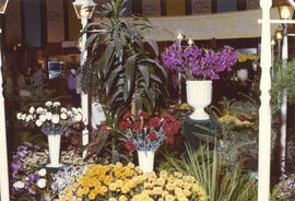 "Display of flowers and plants in 1971 P.N.E. ""Centennial City - Acres of Food"" exhibit,..."